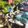 《屋久島一人旅》~バイクで巡って宮之浦へ移動~