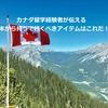 カナダ留学経験者が伝える日本から持って行くべきアイテムはこれだ!