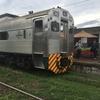 クリチバ鉄道で行くモヘチスの旅