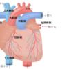 患者さんのための 心臓の基礎知識
