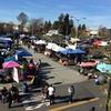 私的サンフランシスコの名所 Berkeley Flea Market(バークリ蚤の市)