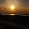 ソロキャン(いばらきキャンプ・夕日の郷松川)~湖畔キャンプとネモフィラを見に~