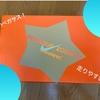 【Nike Pegasus】三世代ぶりにPegasusシューズ購入!Air Zoom搭載で今までよりも更に走りやすい!!!【レビュー】
