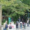 【高尾山~陣馬山縦走コース】もうすぐ紅葉|高尾山コース紹介!