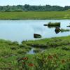 【八島湿原 一周散歩】2.1万2000年の時に思いを馳せながら