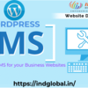 Create a Wordpress Website for the Best Business Returns