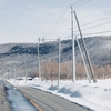 エゾシカとの交通事故に繋がる【融雪剤散布】の意外な弊害