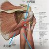 QLSS(投球時の肩後方の痛み)の施術について~埼玉県川越市の村上接骨院