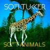 音楽「Drinkee」Sofi Tukker