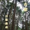 『古都』川端康成~ネタバレあり