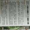 9/10マリア観音
