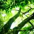 【(*´∀`)行ってきた】八景水谷公園(はけのみやこうえん)@熊本【熊本市北区】