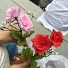 赤い薔薇に誓った Sexy Tour 2017