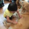 「DOG HEART from アクアマリン」 ワンちゃんとふれあえる場所