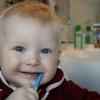 【2歳児・歯磨き】ぐちゅぐちゅ、ぺっ!