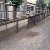 藤沢市内の倒壊可能性がある学校の塀について