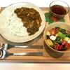【献立・カレー】チキンサグ+サラダ