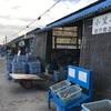 【浅口市】寄島で牡蠣を買おう!!!家で簡単に殻付きの激ウマ牡蠣がたらふく食べられる!!