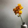 陶蟲夏草一輪挿し 春の花々