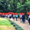 6月3日に最大人数で開催した新宿御苑ウォーキングコン開催レポート♪