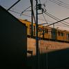 人生の先輩に学ぶ『好きを突き詰めて良い』という地図 / yellow train
