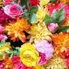 綾野剛がまた魅せた!モニタリングで蜷川実花様率いるスタイリストチームが新成人を魂のサポート