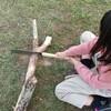 薪はキャンプ場で現地調達するのがおススメだと思う話