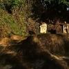 玖珠郡九重町ではじめて見つけた庚申塔