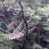 かずら橋に挑戦/ひまわり歯科 2014/9/10