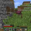 【MinecraftPC版】Part197 エリトラで新しい村へ 牧師と交易