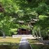 【鎌倉いいね】青々とした「もみじ」や「さくら」も美しい。