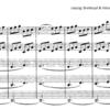 Mozart String Quintet No.5 KV593 Movt. 4