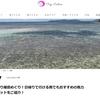 旅行サイトのTrip-Partnerさんに記事を寄稿しました