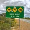 パース Day2 北に向かって200km、そこには!