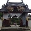 【お茶会】お茶会観光!?京都の日本最大級のお茶会に行ってきた!【茶道教室】