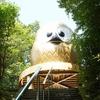 フクロウだらけの神社「鷲子山上神社」