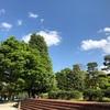 SSK (SunnySide of Kyoto)(+754/1119)