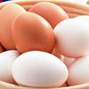 卵の美容効果がスゴイ!1日の摂取量は?