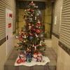 クリスマスツリーを飾りました。コスモコート編〜