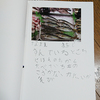 1年生の夏休みに自由研究で作ったもの(おさかな図鑑の作り方)
