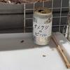 西成で暮らす。97〜101日目 「お菓子食いすぎの刑」