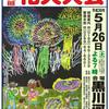 鹿沼の花火大会