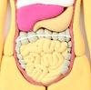 【ためしてガッテン】大腸内視鏡検査の経口腸管洗浄剤で便秘解消!美肌、ダイエットにも!