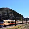 西武秩父線の電車と桜のコラボを撮りに行ったのですが
