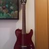 エレガットギター