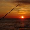 ランクC.こんな時如何する!NO.24『朝まだ暗い時防波堤・埠頭・テトラで鮭が跳ねている時・・』/今日の紋別