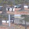 北朝鮮、警備兵を全員交代か ~脱走事件で