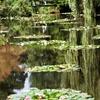 ジべルニー 水の庭園