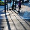 月末、バンコク生活はいつものように(朝の散歩)から。