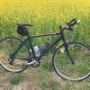 東松山の岩殿観音から小川町まで春を探しにクロスバイクで走ってきました。